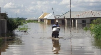Flood Co-Operation in Western Africa