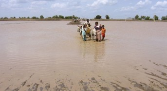 Floods in Sudan,  August 2013