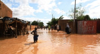 Niger Floods Could Bring Famine