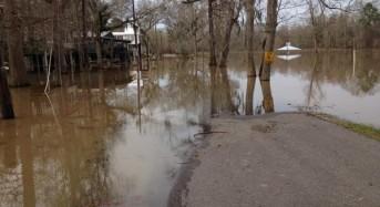 Amite River Breaks Banks Near Baton Rouge, Louisiana