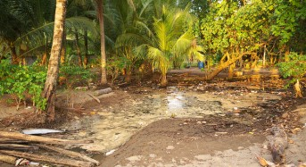 45,000 Affected by Floods in Papua New Guinea