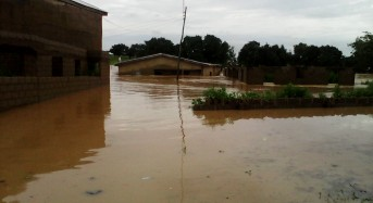 Flooding in Niger Leaves 12 Dead