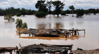 Niger Floods Leave 4 Dead and 1000s Displaced
