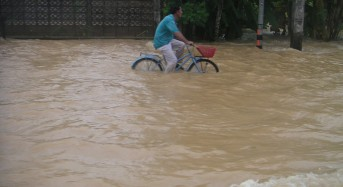 Floods Cause 17.5 % Drop in Employment in Thailand's Agricultural Sector
