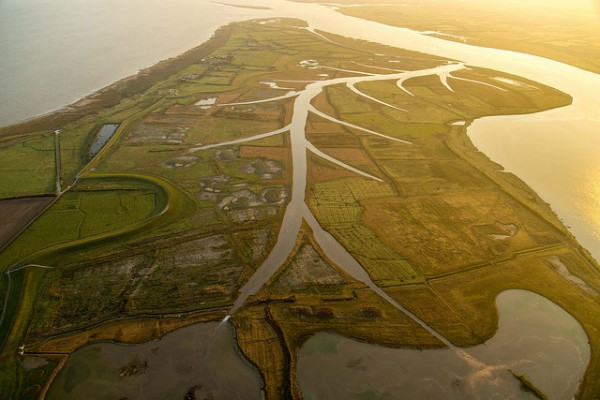 Steart Marshes Coastal Flood Management Scheme (Photo: Environment Agency)
