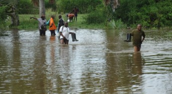 Uganda – Coping Strategies for Landslide and Flood Disasters in Mount Elgon Region
