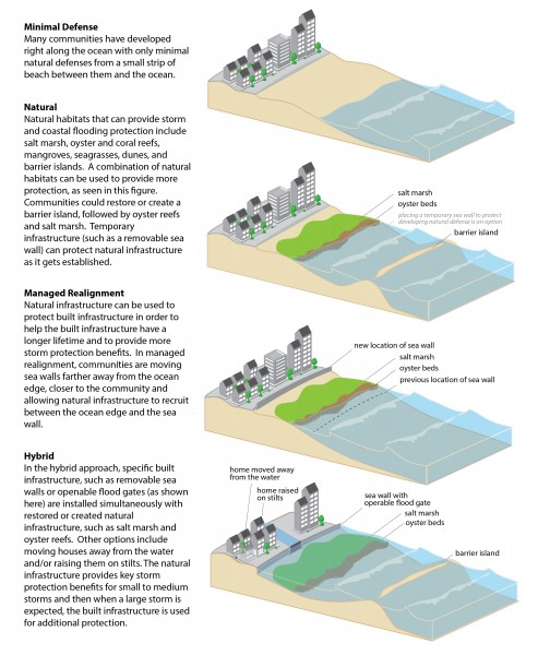 Examples of coastal defenses including natural infrastructure, managed realignment, and hybrid approaches. (Credit: NOAA).
