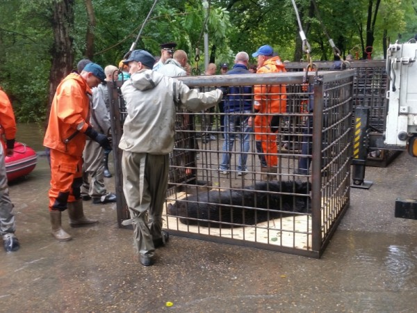 Ussuriysk zoo evacuation. Photo: EMERCOM