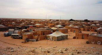 Algeria – Aid for Flood Hit Sahrawi Refugee Camps