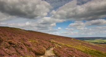 UK Floods – Revitalising Natural Landscapes Can Reduce Flood Risk
