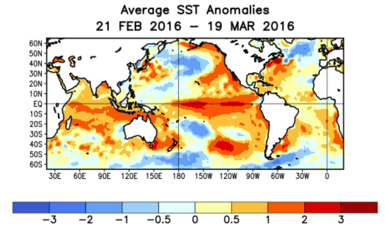 el nino By michael slezak the current extreme el niño is now the strongest ever  recorded, smashing the previous record from 1997-8 already.