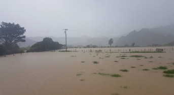 New Zealand – Floods in Coromandel After 124mm of Rain in 24 Hours