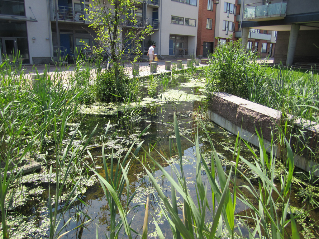 A new approach to storm water management and flood for Design agency pond