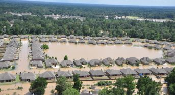 Suburban Sprawl and Poor Preparation Worsened Flood Damage in Louisiana