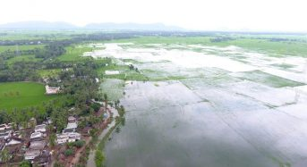 India – Floods in Andhra Pradesh Leave 17 Dead and Thousands Displaced