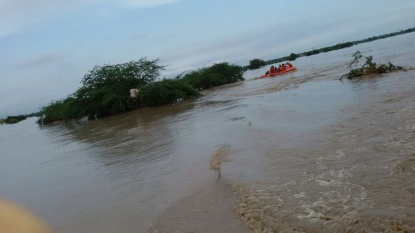 NDRF rescue teams in operation in Andhra Pradesh. Photo: NDRF