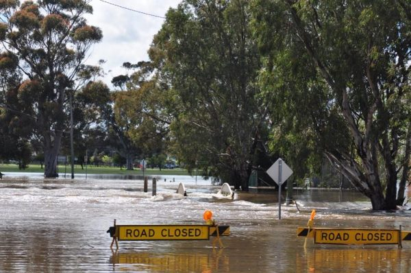Flooding in Forbes, New South Wales. Photo: NSW SES Lachlan Region