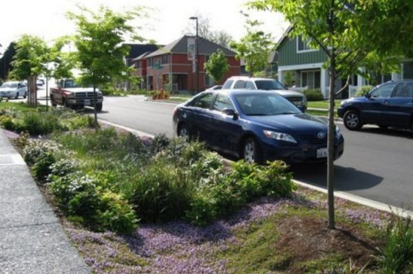 The street-side swale and adjacent porous concrete sidewalk are located in the High Point neighborhood of Seattle, WA (Source: Abby Hall, US EPA).