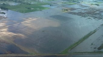 Argentina – Farming Areas Devastated After Floods in Buenos Aires Province