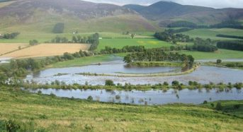 Ireland – Study Finds Significant Benefits of Natural Flood Management Ignored