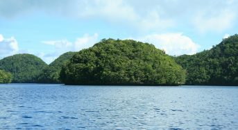 With Backyard Flooded, Palau President Opens to China Climate Leadership