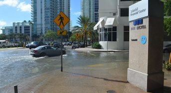 USA – in Miami, Battling Sea Level Rise May Mean Surrendering Land