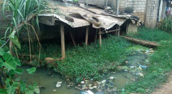 """Cameroon Cleanup Lets Flood-Hit Residents Sleep With """"Both Eyes Closed"""""""