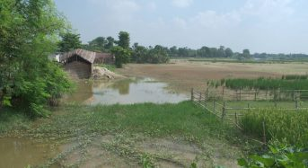 India's Water-Logged Farmers Try Out Revamped Flood Insurance