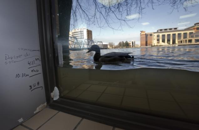 Floods in Grand rapids