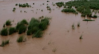 Australia – Tropical Low Brings Widespread Flooding to Northern Parts of Western Australia