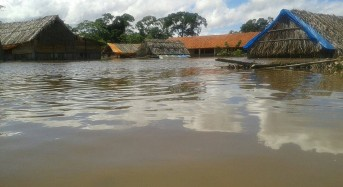 Bolivia Floods – Red Cross Support for Health, Hygiene and Sanitation