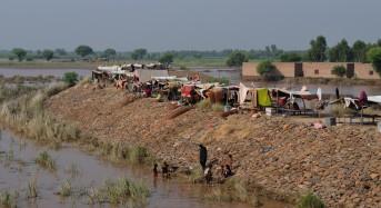 Red Cross Appeal to Help Pakistan Flood Survivors