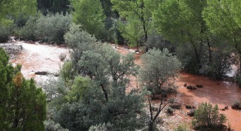 Federal Disaster Aid for New Mexico Floods