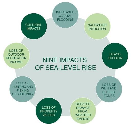 9 impacts of sea level rise. Image: National Wildlife Federation