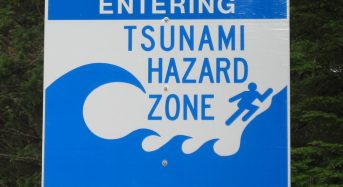 Strength in Beauty – Rethinking Tsunami Defense