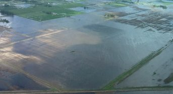 Rainfall Changes Threaten Food Production