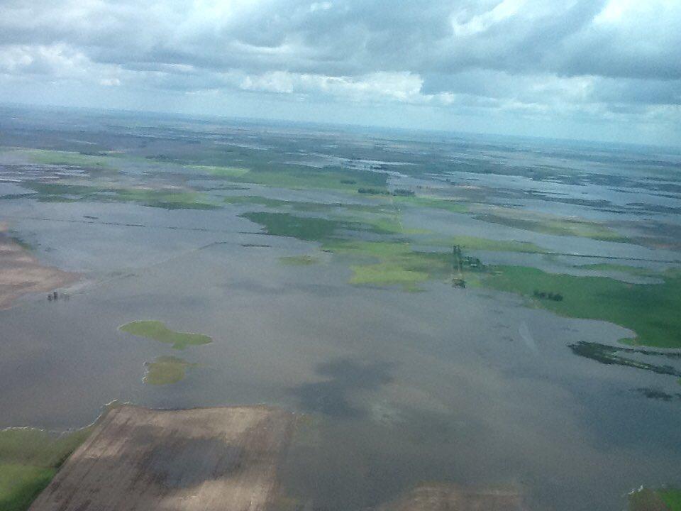 Flooded farmland in Provincia de Buenos Aires