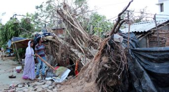India – Beyond Shelter in a Storm, Odisha Eyes Sturdier Homes, Power and Trees