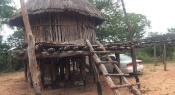 High and Dry: Flood-Hit Zimbabweans Look Back to Stilt Homes
