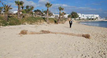 Holding Back the Tide – Sea's Advance Threatens Tunisia's Beaches