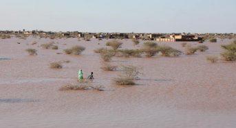 Sudan – Floods Death Toll Rises