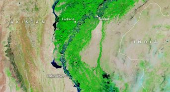 Pakistan – 300,000 in Need of Food Assistance After Floods in Sindh, Says WFP