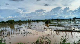 Nigeria – Floods Destroy Crops and Homes in North