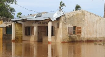Southern Africa – Tropical Cyclone Eloise Triggers Floods in Mozambique, Zimbabwe and South Africa