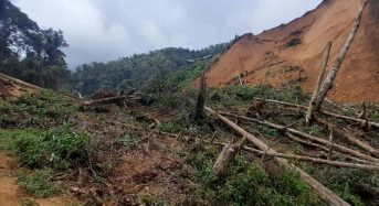 Papua New Guinea – Deadly Landslide in Central Province
