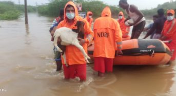 India – Hundreds Displaced by Floods in Tamil Nadu
