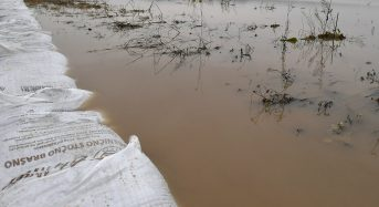Southeastern Europe – Floods Prompt Evacuations in Serbia, Bulgaria, Albania and Kosovo