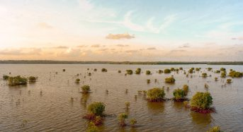It's Time to Change How We Connect With Floodplains