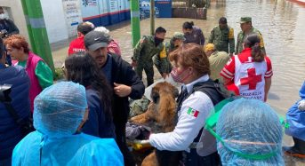 Mexico – 17 Hospital Patients Die After Floods in Hidalgo
